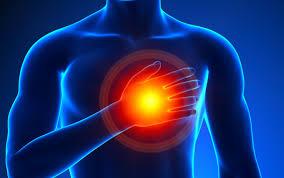 Cardiline - para hipertensão - Amazon - capsule - forum